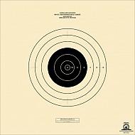 Sr 21 Rifle Targets 100 Yard Simulating 300 Yard Target